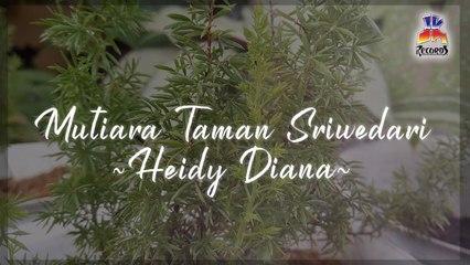 Heidy Diana - Mutiara Taman Sriwedari (Official Lyric Video)