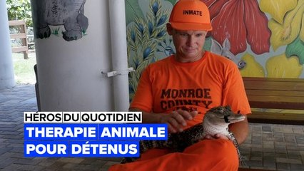 États-Unis : zoothérapie pour détenus