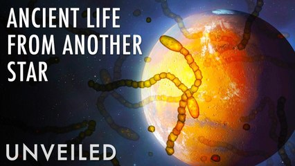 What If Life Came From Another Star System? | Unveiled