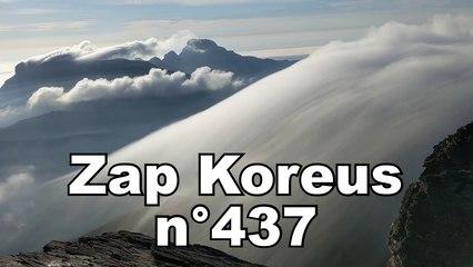 Zap Koreus nn°437