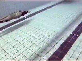 Un requin dans une piscine