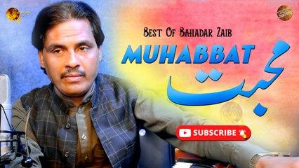 Muhabbat By Bahadar Zaib   Pashto New Song   Spice Media