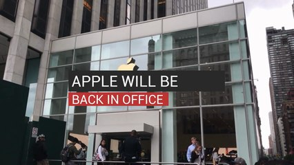 Apple Will Be Back in Office
