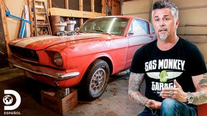 Mustang Shelby de $25,000.000 no es lo que parece | El Dúo mecánico | Discovery En Español