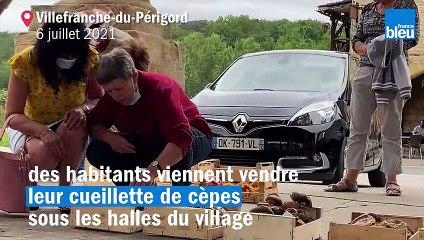 """VIDÉO - """"La pousse a été bonne"""" au marché aux cèpes de Villefranche-du-Périgord"""