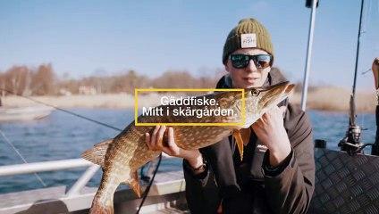 Fiske i världsklass i Karlskrona