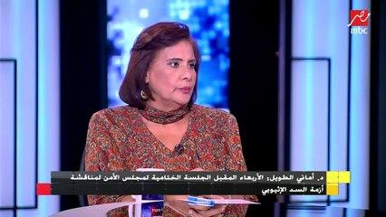 تفاصيل المشروع التونسي حول حل أزمة سد النهضة