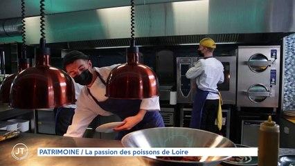 PATRIMOINE / La passion des poissons de Loire