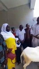 Tabaski : Pastef international offre un mouton à Ousmane Sonko
