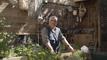 Basilic, thym, ciboulette... Comment installer des plantes aromatiques dans une jardinière ?