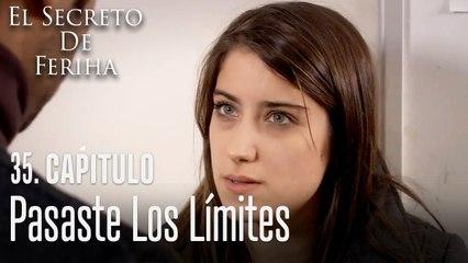 Pasaste los límites - El Secreto De Feriha Capítulo 35 En Español