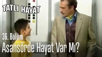 Asansörde hayat var mı? - Tatlı Hayat 36. Bölüm