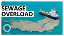 中國船隻停南海 污水排放破壞生態