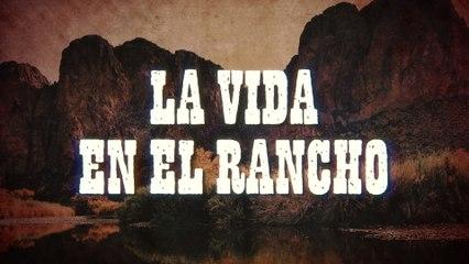Banda Rancho Viejo De Julio Aramburo La Bandononona - La Vida En El Rancho