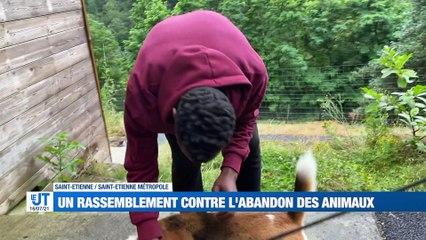 A la Une : Un député menacé de mort / Des pompiers de la Loire au secours de la Belgique / Un rassemblement contre l'abandon des animaux