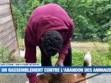 A la Une : Un député menacé de mort / Des pompiers de la Loire au secours de la Belgique / Un rassemblement contre l'abandon des animaux - Le JT - TL7, Télévision loire 7