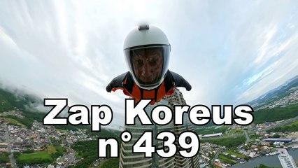 Zap Koreus n°439