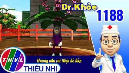 Dr. Khỏe - Tập 1188: Hương nhu cải thiện hô hấp