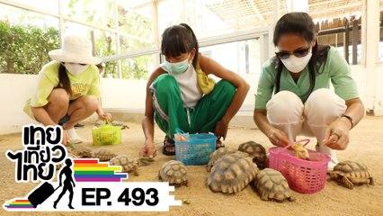 เทยเที่ยวไทย ตอน 493   Road trip เพชรบุรี