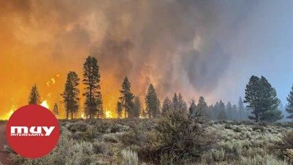El incendio masivo Bootleg de Oregón está creando su propio clima