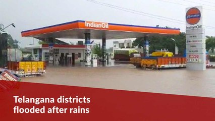 Telangana districts see floods, submerged crops amid spate of rain