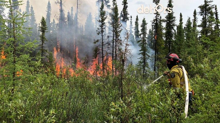 Contrer les feux de forêt en Alberta | À Distance