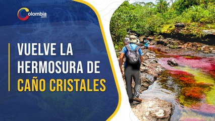 Gobierno reanuda visitas a Caño Cristales tras la pandemia por COVID-19