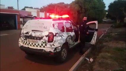 Patrulha Ambiental da GM resgata cachorro ferido com golpe de faca no São Cristóvão; dono foi detido por maus tratos