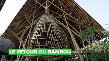 Héros verts : les maisons de bambou