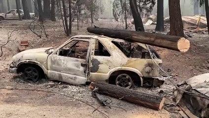 Erdőtüzek Kaliforniában