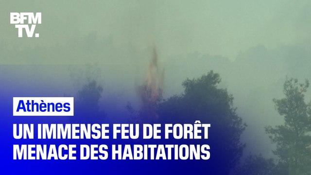 Ce mardi, un feu de forêt s'est déclaré à Athènes et menace des habitations