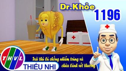 Dr. Khỏe - Tập 1196: Trái thù lù chống nhiễm trùng và chữa lành vết thương