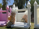 BOUNCE HOUSE FOR ADULTS! You can rent white and pink bounce houses in Arizona - ABC15 Digital