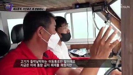 환경 역량 평가가 없이 운영되는 해상 풍력 발전기 TV CHOSUN 210729 방송