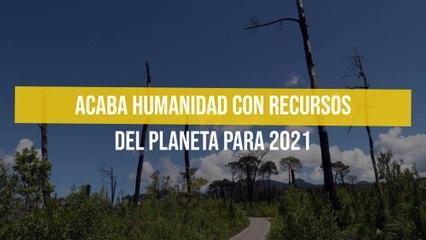 Acaba humanidad con recursos del planeta para 2021