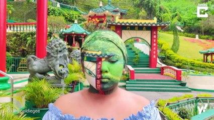 Verblüffende Camouflage Make-Up Kunst