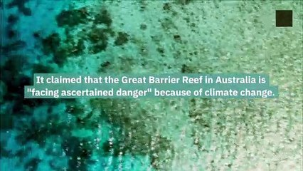 Australia Rejected the UN Climate Warning About the Great Barrier Reef