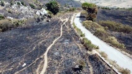 Waldbrände auf Sizilien: Drohnenvideo zeigt verkohlte Landstriche