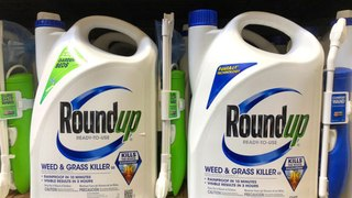 Bayer to Remove Glyphosate Products From US Home and Garden Market