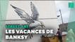 Banksy revendique une série d'œuvres apparues en Angleterre