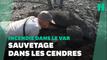 Incendie dans le Var: opération de sauvetage de tortues dans une réserve naturelle