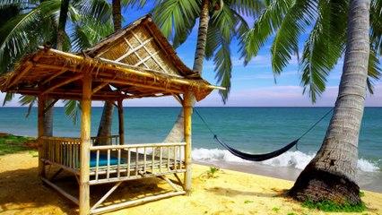Tropical Beach Hut | Happy Summer
