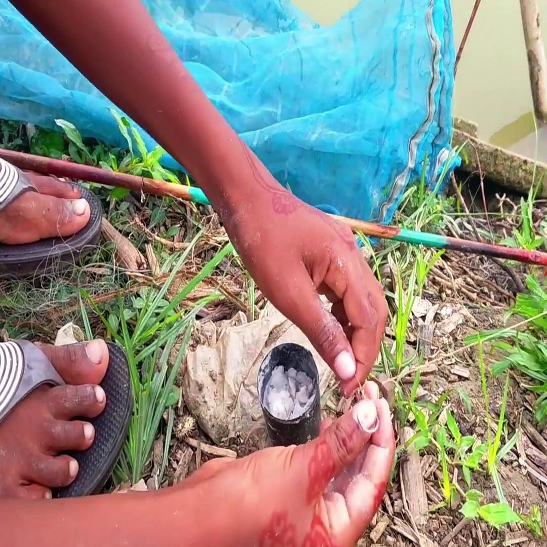 Video,,तलाब से मछली पकड़ता हुआ बालक ।। boy fishing by the pond ।। ajay sharma7398