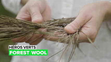 Héros verts : Forest Wool