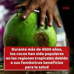 Algunos de los increíbles beneficios de los cocos