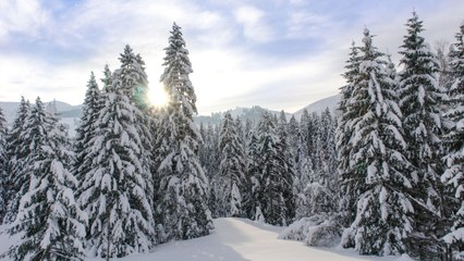 Everything to Know About the Winter Solstice