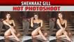 Shehnaaz Gill looks smoking hot in latest photoshoot