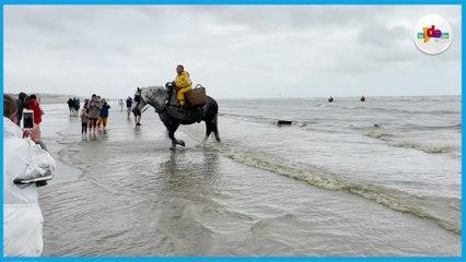 Les pêcheurs de crevettes à cheval de la mer du Nord