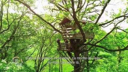 En Terre ferme avec Yann Arthus Bertrand - EXTRAIT