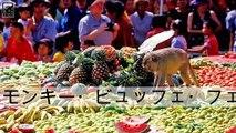 世界で最も奇妙な10のフェスティバル
